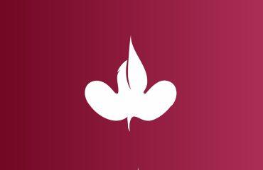 mapemond logo